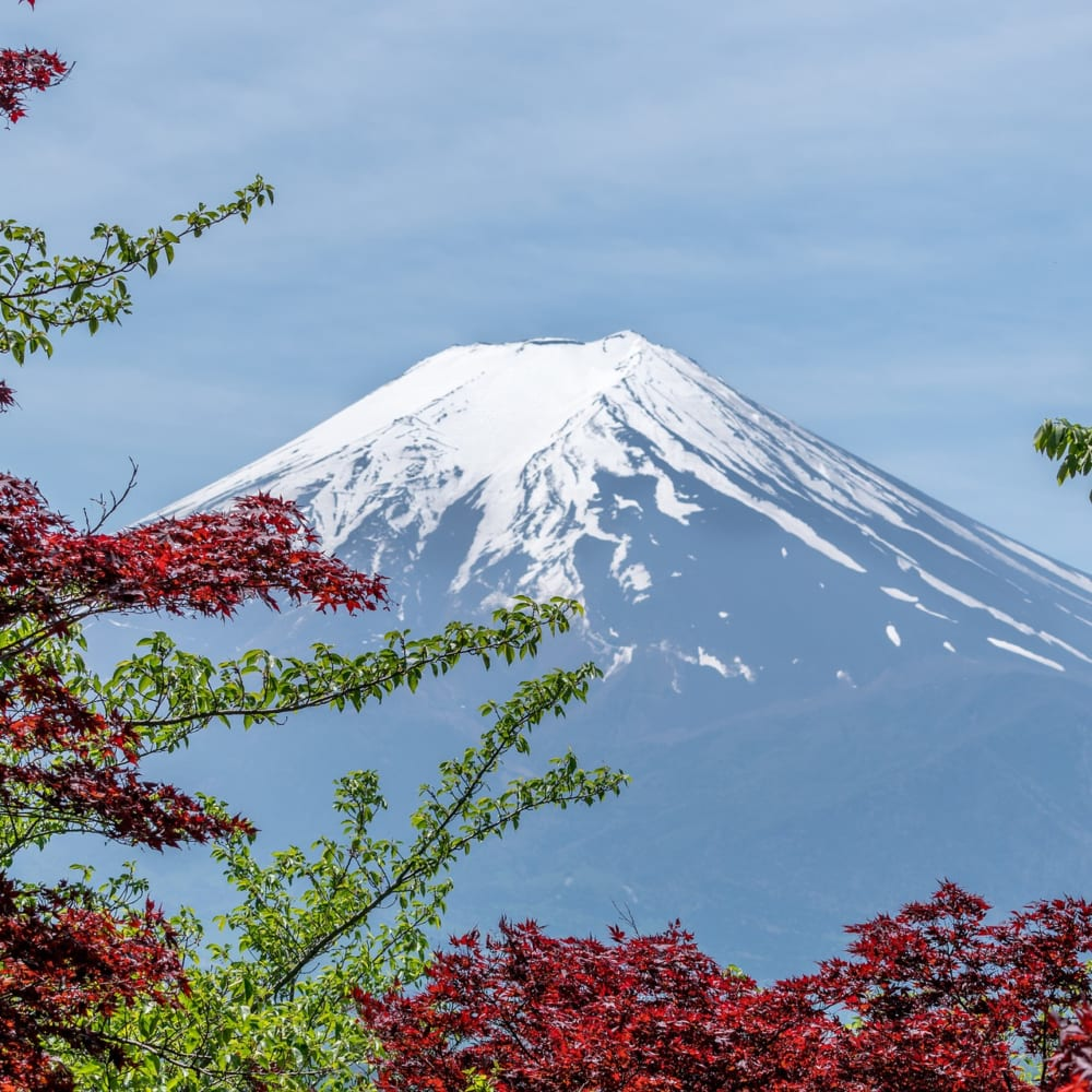 7 frequently asked questions about Japan