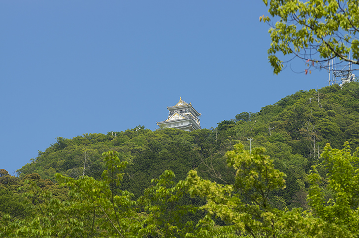gifu castle on mt.kinka